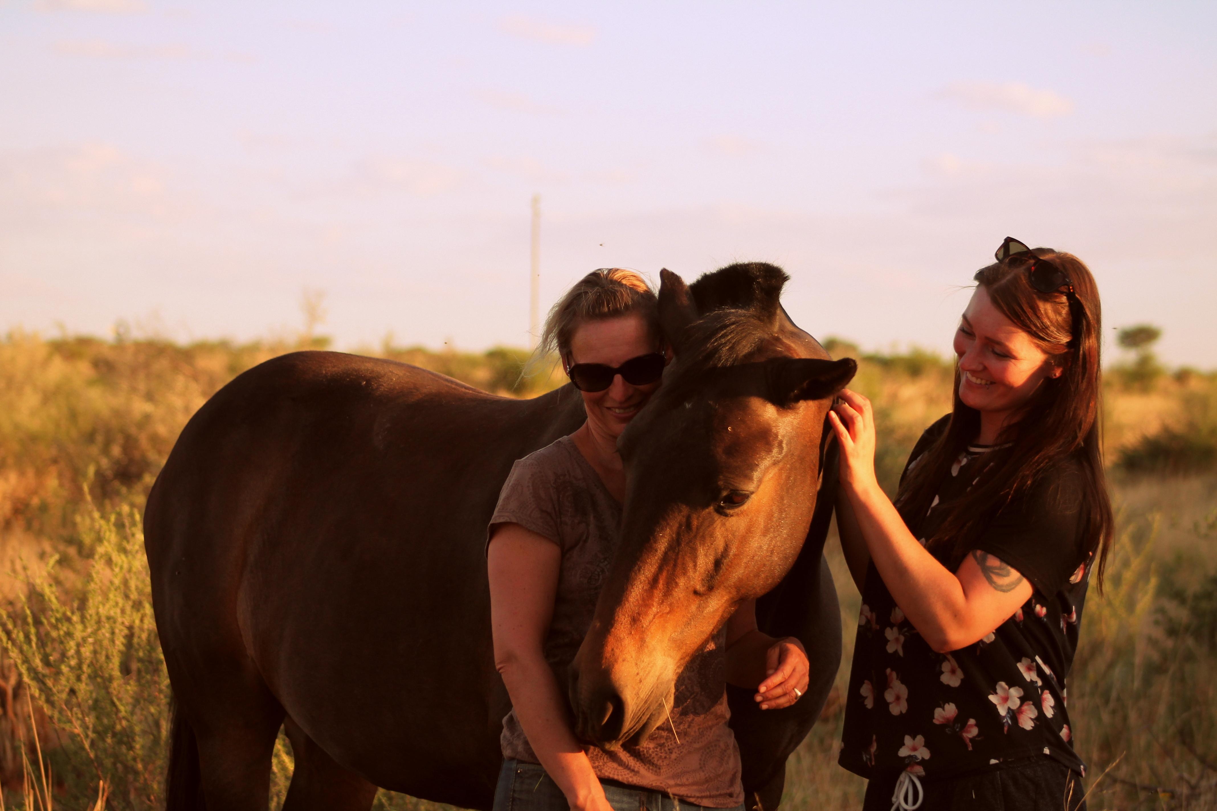 Reitkunst in Namibia – meine Reise in die Sonne