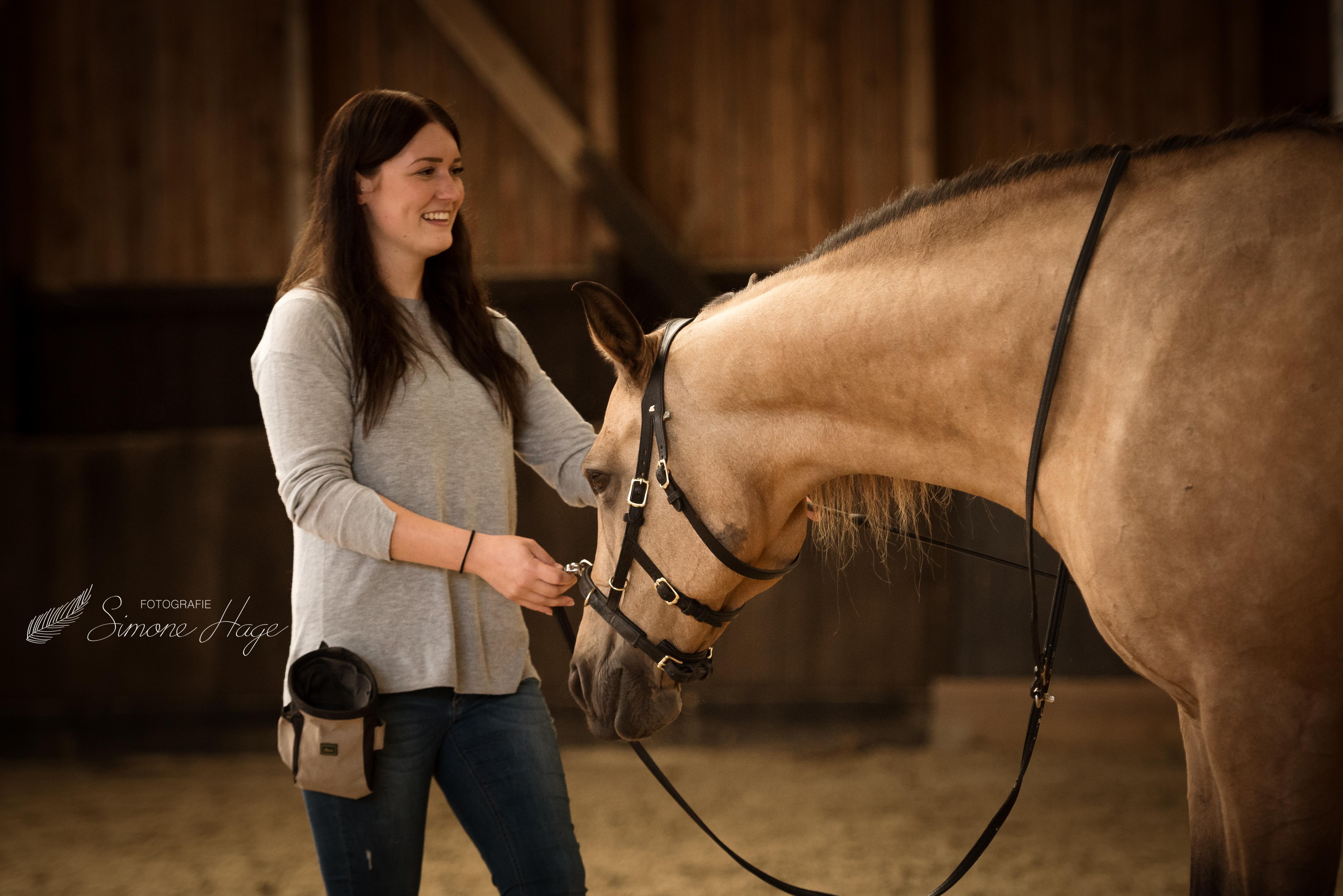 Therapie und Gymnastizierung – Helfer für den Pferdekörper